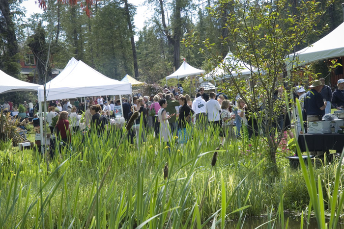 Tofino Food & Wine Festival